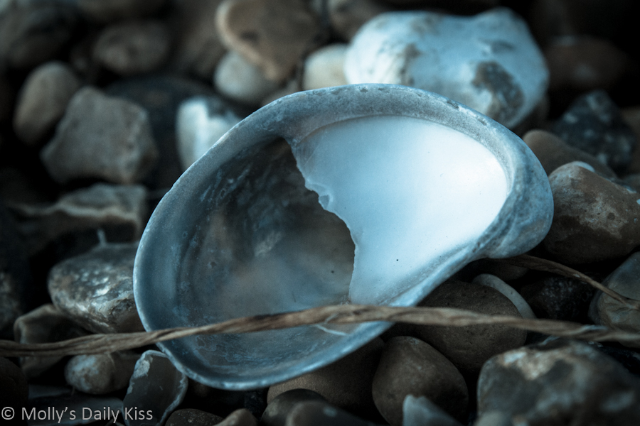 Empty shell on beach representing unfilled submission in a relationship